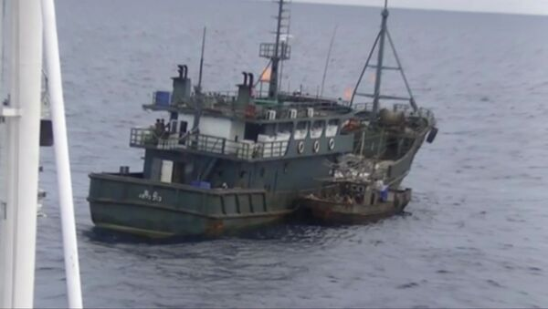 日本海に北朝鮮の密漁者 - Sputnik 日本