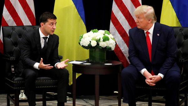 ゼレンスキー大統領とトランプ大統領 - Sputnik 日本