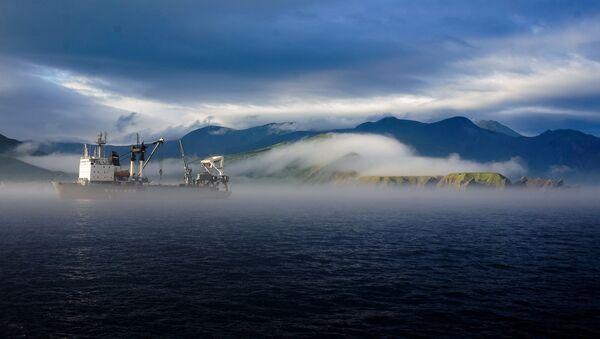 南クリル諸島ツアー  - Sputnik 日本