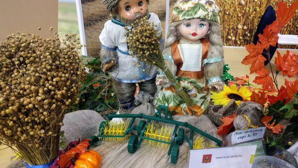 農業展示会「黄金の秋」 - Sputnik 日本