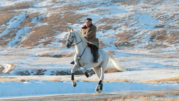 金正恩委員長、白馬で聖地を登り、米国の制裁を批判【写真】 - Sputnik 日本