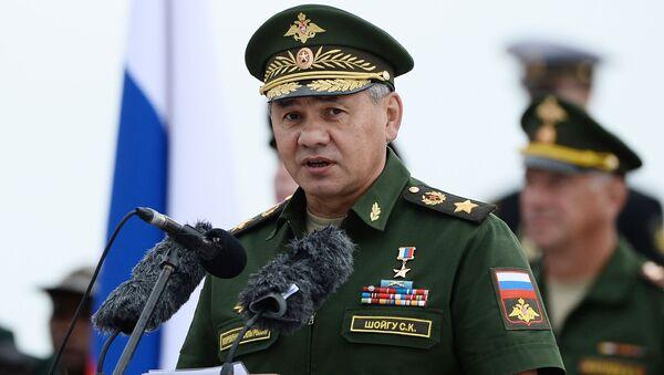 露国防相:シリアにおけるロシア航空宇宙軍の任務は果たされた - Sputnik 日本