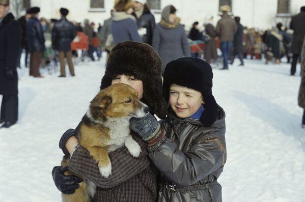 子犬と少年 カルゴポリにて 1987年 - Sputnik 日本