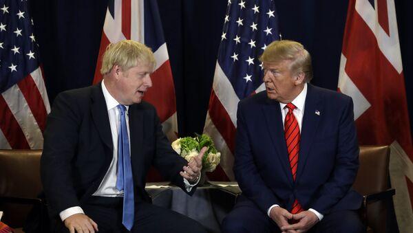 トランプ氏、来年にジョンソン氏をホワイトハウスに招待か 英メディア - Sputnik 日本