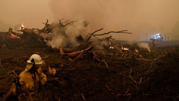 日本、オーストラリア森林火災で航空自衛隊の輸送機派遣 - Sputnik 日本