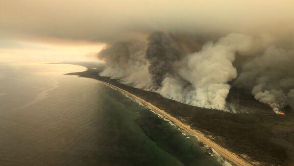 オーストラリア森林火災 - Sputnik 日本