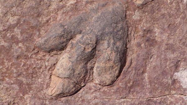 恐竜の足跡 - Sputnik 日本