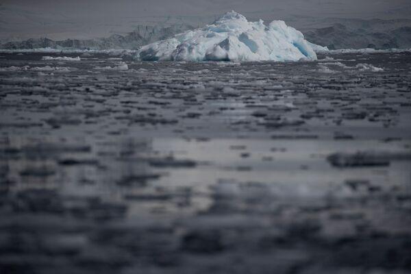 小さな流氷  フルニエ湾にて - Sputnik 日本