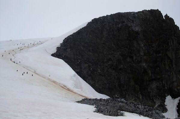 山沿いを行進するヒゲペンギンのコロニー トゥー・ハンモック島にて  - Sputnik 日本
