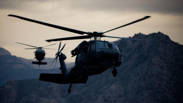 米国製ヘリコプターBlack Hawk16機 - Sputnik 日本