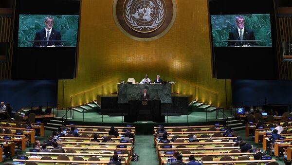 国連総会(2019年) - Sputnik 日本