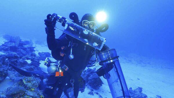 深海魚 - Sputnik 日本