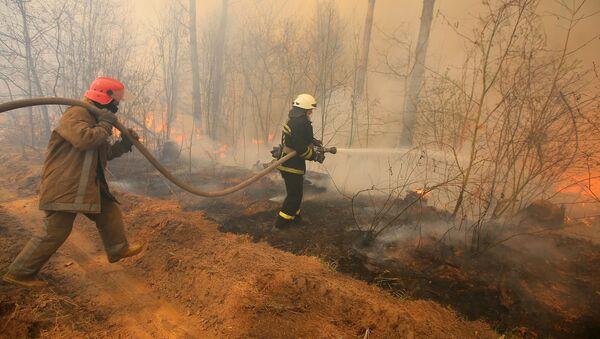 チェルノブイリの森林火災 - Sputnik 日本