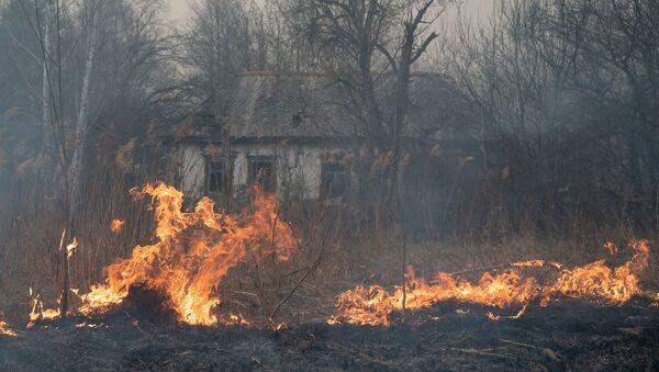 チェルノブイリ区域の火災 - Sputnik 日本