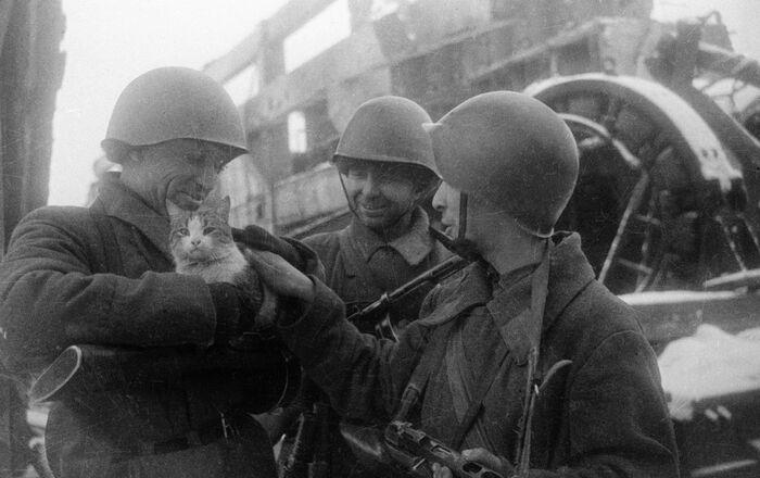 「平和な思い出」スターリングラード(現・ボルゴグラード)(1943年)