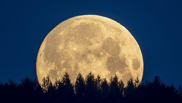 月(アーカイブ写真) - Sputnik 日本