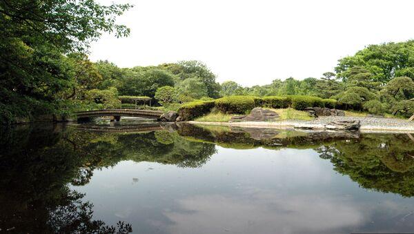 皇居東御苑の池(東京) - Sputnik 日本