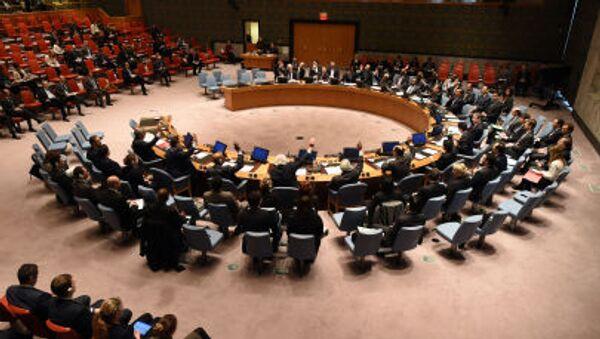 国連安保理 - Sputnik 日本